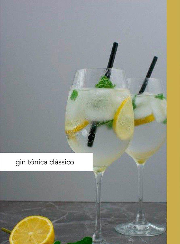 artes gin 02